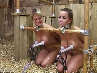 best of Dick and slave crempie nude handjob