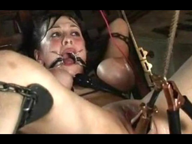 best of Galleries pic Free bdsm