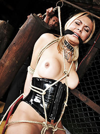 best of Pics Extreme shemale bdsm